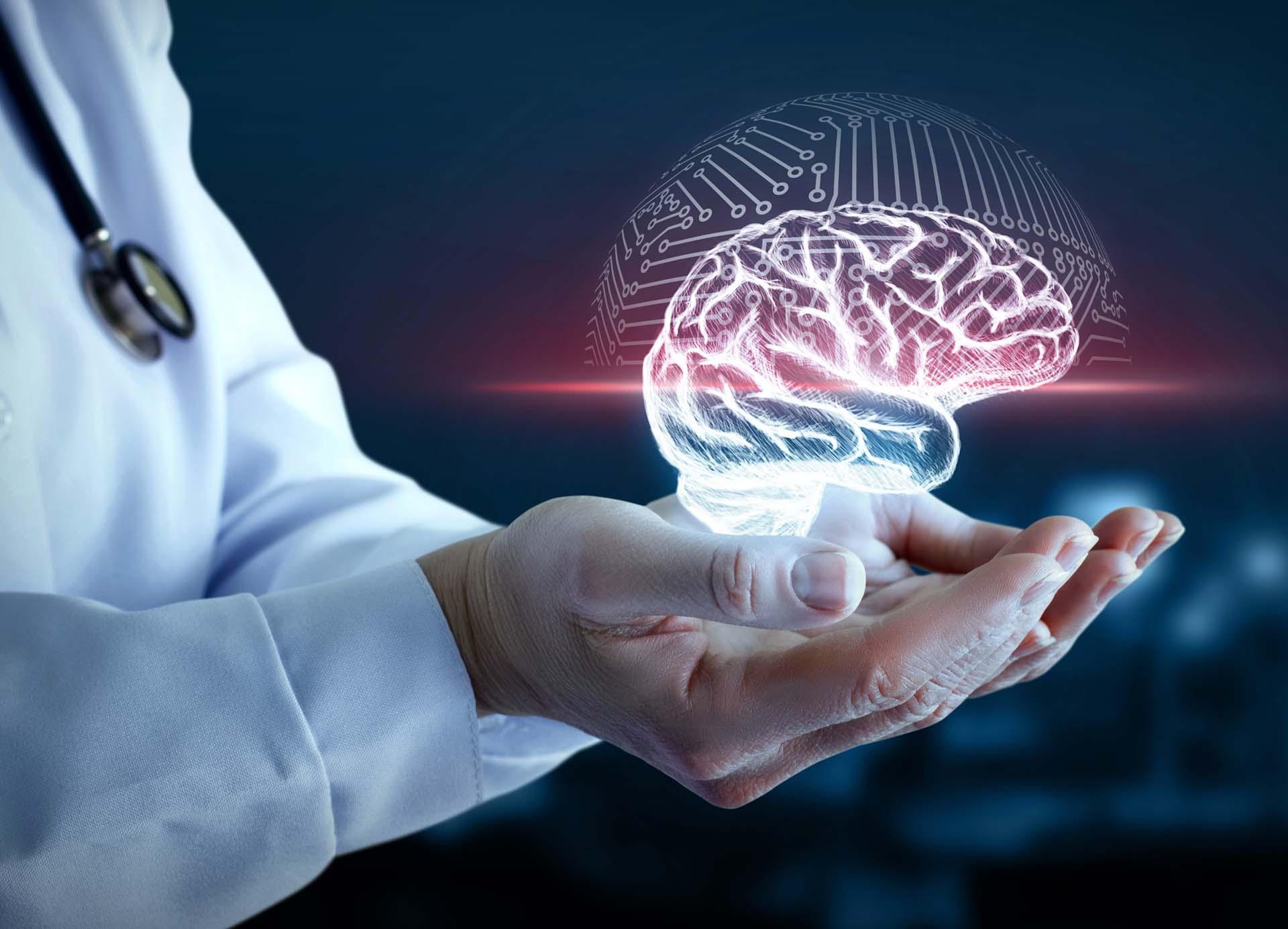 Vlaamse Vereniging voor Neurologie